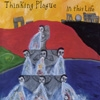 Thinking Plague - In This Life (25th anniversary remaster) Rune 407