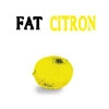 Fat - Citron 05-CATDOG 002CD
