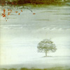 Genesis - Wind and Wuthering (remixed/remastered) (special) 15-Virgin 163823