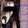 Forever Einstein - Opportunity Crosses The Bridge Rune 41